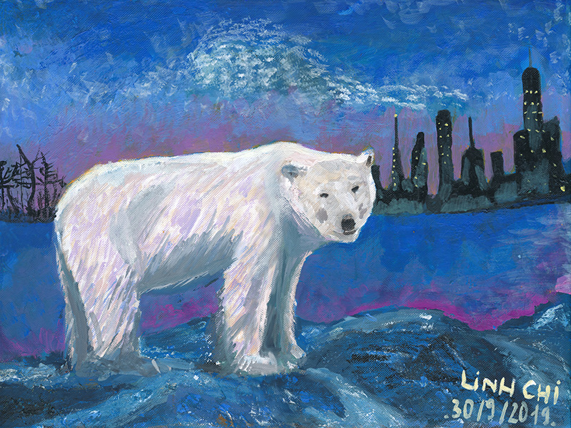 The lost Polar Bear
